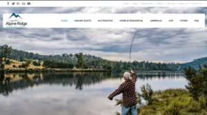 insurance agency website in puyallup wa
